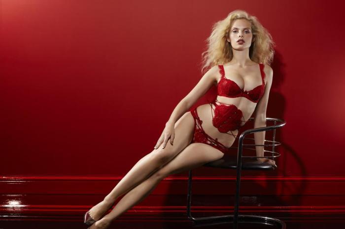 soiree-agent-provocateur-autumn-winter-2012-lingerie-look-book